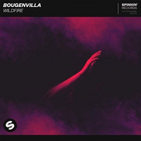 BOUGENVILLA - WILDFIRE